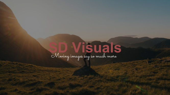 Logo van SD Visuals videography